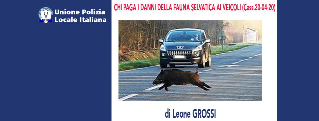 CHI PAGA I DANNI DELLA FAUNA SELVATICA AI VEICOLI (Cassazione 20-04-20) di L.Grossi