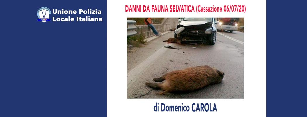 DANNI DA FAUNA SELVATICA (Cassazione 06/07/2020) di D.Carola